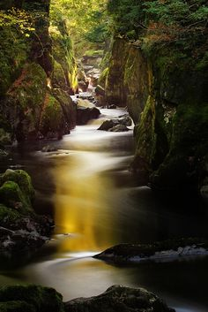 Fairy Glen, Betws-y-coed, Wales  photo via kris