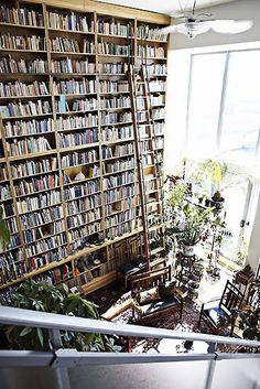 Now that's a bookcase!