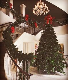 Christmas is my favorite time of year. I need a house that can light up during the holidays with christmas cheer. Not to mention a giant tree to bring in that piney smell Christmas Mood, Merry Little Christmas, Noel Christmas, All Things Christmas, Christmas Tree Goals, Christmas Staircase, Christmas Berries, Christmas Entryway, Winter Things