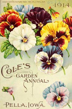 Cole's Garden Annual (1914). Pella, Iowa. 'Cole's Superb Mixture Pansy' Vintage Diy, Vintage Labels, Vintage Paper, Vintage Postcards, Art Floral, Art Mural Floral, Garden Catalogs, Seed Catalogs, Impressions Botaniques