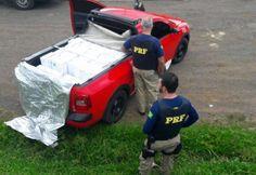 Policiais rodoviários federais apreenderam por volta do meio dia de hoje (27), na BR 282 em Irani (SC), cerca de 560 quilos de camarão contrabandeado.  As 31 caixas com o produto foram encontrad