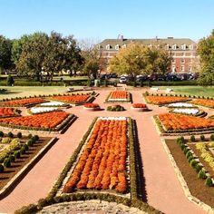 Oklahoma State University in Stillwater, Oklahoma. #university #osu #cowboys