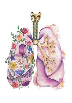 Items similar to Medical Anatomy Art- Stunning Watercolour Flower Lungs PRINT on Etsy Medical Anatomy Art Stunning Watercolour Flower Lungs PRINT Medical Drawings, Medical Art, Medical Illustrations, Human Anatomy Art, Anatomy Drawing, Watercolor Flowers, Watercolor Art, Biology Art, Medical Anatomy