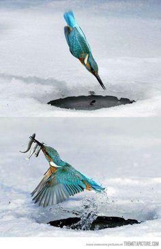 Ice fishing baby...