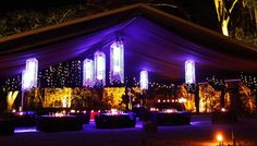 Flames of the Forest - Port Douglas Aboriginal Culture, Wedding Inspiration, Wedding Ideas, Best Places To Eat, Cairns, Fabulous Foods, Marry Me, Cool Things To Make, Hospitality