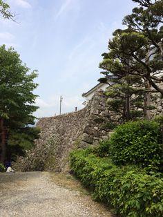 高知城 湾曲した石垣 2015.05.11