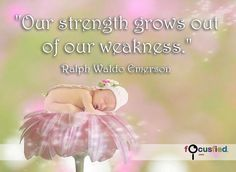 """""""Our strength grows out of our weakness."""" http://Focusfied.com #quote"""