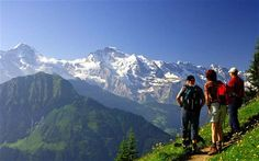 exhilarating | Switzerland: an exhilarating walk in the Swiss Alps - Telegraph