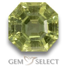 GemSelect features this natural untreated Apatite from Madagascar. This Green Apatite weighs 2.3ct and measures 7.4 x 7.3mm in size. More Asscher Cut Apatite is available on gemselect.com #birthstones #healing #jewelrystone #loosegemstones #buygems #gemstonelover #naturalgemstone #coloredgemstones #gemstones #gem #gems #gemselect #sale #shopping #gemshopping #naturalapatite #apatite #greenapatite #octagongem #octagongems #greengem #green Green Gemstones, Loose Gemstones, Natural Gemstones, Buy Gems, Asscher Cut, Gem S, Gemstone Colors, Madagascar, Shades Of Green