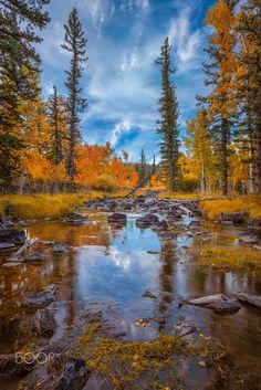 Duck Creek in fall (Utah) by Rex Jones on 500px