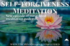 Here's a great meditation on self-forgiveness that can be extremely helpful in cultivating a healthy relationship with ourselves. Check it out at http://ift.tt/2l8z5Fd.  #forgive #forgiveness #selfforgiveness #forgiving #meditate #meditation #oneminddharma