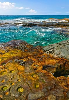 Shoreline at Ho'okena Beach on the Big Island of Hawaii. The characteristic seaweed colors blend with the turquoise water and black lava patterns.