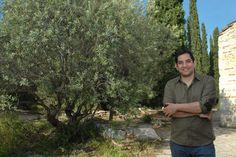 Το ελαιόλαδο made in… Μυτιλήνη που φυτεύει δέντρα στην Αφρική