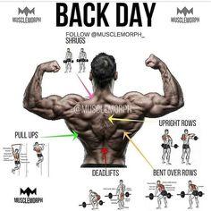 back day back exercise back workout gym bodybuilding fitness musclemorph musclemorphsupps…. Back Day Back Exercise Back Training Gym Bodybuilding Fitness Muscle Change musclemorphsupps …. Fitness Workouts, Gym Workout Tips, Weight Training Workouts, At Home Workouts, Fitness Tips, Fitness Motivation, Back Workouts, Back Day Workout, Dumbbell Back Workout
