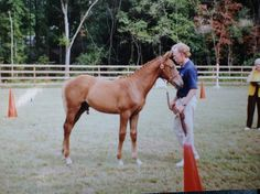 This is my horse, Galileo's Star, when he was little. Trust me, he's MUCH bigger now.