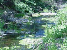 Peaceful Bear River, CA