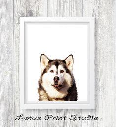Dog Print Husky Wall Art Animal Decor Kids Room Art  Wolf