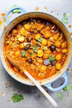 Indian Chicken and Potato Stew with Garam Masala Tomato Sauce   www.floatingkitchen.net