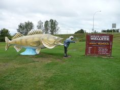 World's Largest Walleye, Rush City, MN Paul Bunyan, Back Road, Roadside Attractions, Worlds Largest, Statues, Minnesota, Larger, Tourism, Road Trip
