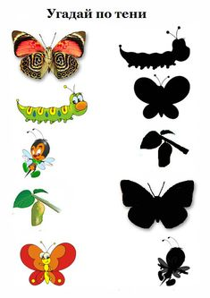 "Тематический комплект ""Бабочки"" - Babyblog.ru"