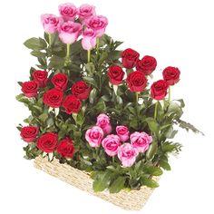 Rosas con Girasoles arreglos florales en Cartagena Flower Box Gift, Flower Boxes, Church Flowers, Funeral Flowers, Valentine's Day Flower Arrangements, Corporate Flowers, Valentines Flowers, Beautiful Rose Flowers, Window Box Flowers