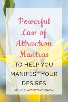These free law of attraction pdf worksheets are designed to help ...