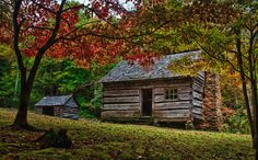 Cabin in the Fall.     One of the old homesteads in Roaring Fork in the Great Smoky Mountains National Park.