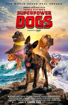 Canine Companions for Independence is the official working dog partner for the IMAX® original film Superpower Dogs premiering on March We'll be. Kenya, Dog Presents, English Movies, Real Hero, Working Dogs, Super Powers, Movies To Watch, Pet Care, Movies Online