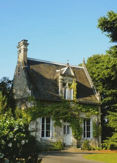Vine covered fairytale cottage in Provence, France. - Luxury Today