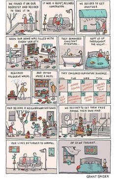 Grant Snider - INCIDENTAL COMICS