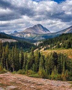 Nigel Peak (Banff/Jasper border, Alberta) by Mark Jinks (@markjinksphoto) on Instagram