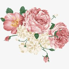 watercolor,flowers, Watercolor, Flowers, Flowers PNG Image