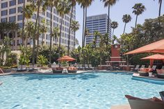 Island Hotel Newport Beach Luxpitality California Pool Palmtrees