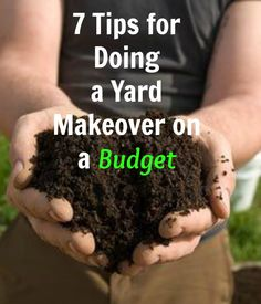 7 Tips for doing a yard makeover on a budget  http://www.hometalk.com/l/qlv