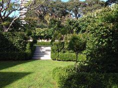 the garden at Mollies