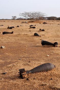 A former battlefield strewn with thousands of mortars in the desert of eastern Sudan. The area has been the scene of numerous conflicts in the past decades and is riddled with remnants of war that continue to be a threat to the civilian population. [Photo: J.B. Russell / MAG, 2011]