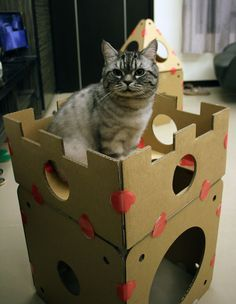 Exceptionnel The Ultimate Modular Cat House, Itu0027s Modular Design Lets You Build The  Purrfect Cat House!