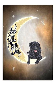 Digital drawing of a black lab Black Labs, Black Labrador, I Love Dogs, Cute Dogs, Animals And Pets, Cute Animals, Dog Rules, Lab Puppies, Tier Fotos