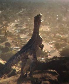 Blue | Jurassic Park wiki | FANDOM powered by Wikia