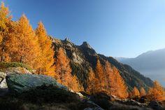Pass de Buffalora 2261 m (03:50, Val Calanca)