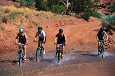 Gauteng Mountain Biking - Cyclists are a diverse bunch. Some like to saddle up with the family for a gentle day's ride, others ride up burly hills and down rocky trails. Some are competitive and others just want to feel healthy. Some look for an adrenaline rush while others want basic transportation.