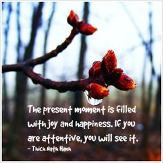 The present moment is filled with and . If you are attentive, you will see it. Good Morning Song, Best Success Quotes, Mocca, How Big Is Baby, Joy And Happiness, See You, Baby Driver, Wisdom, In This Moment