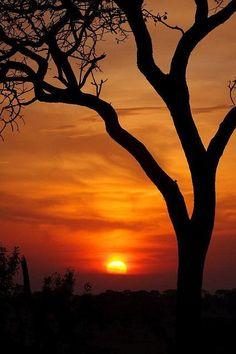 Sunset in Serengeti National Park, Tanzania