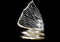 ring ,silver, gold