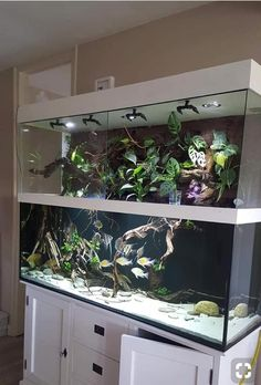 I Made This Turtle Basking Penthouse For My Son S Turtle