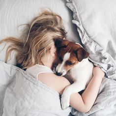 near Mercury - simply-divine-creation: Minimal Living Sleepy Dogs, Natural Sleep Aids, Dog Rules, Jack Russell Terrier, New Puppy, Life Inspiration, Animal Photography, Fashion Photography, Dog Bed