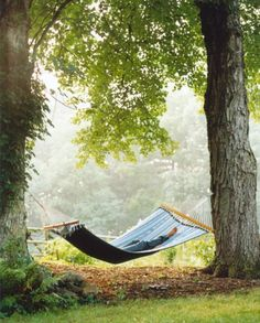I've always had a thing for hammocks.  A hammock implies rest, relaxation.  A hammock, a great book, the peace and quiet of a lazy Sunday afternoon... aaahh, bliss.