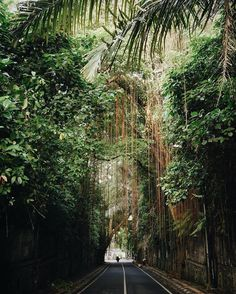 A town intertwined with the jungle #BTinBali #Ubud