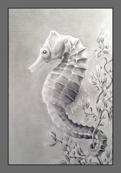 sketch of sea horses | Another drawing for that Nature Drawing class that gives me free ...