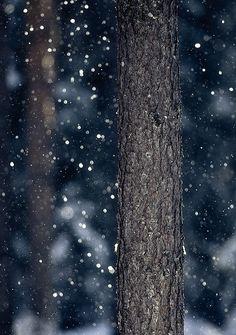 """0rient-express: """" Snowshower (by Joni Niemelä). """""""